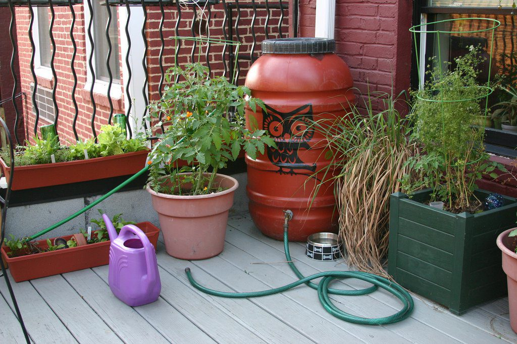 Rain Barrel by Barb Howe used under CC BY 2.0